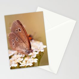 Ringlet brown butterfly Stationery Cards