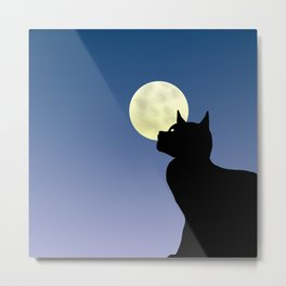 Moon and black cat Metal Print