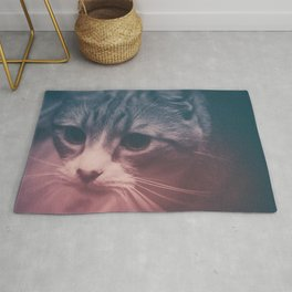 photo cat Stefan #photo #cat Rug