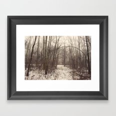 Bare Woods Framed Art Print