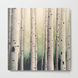Birch wood at Midsummer Metal Print