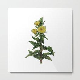 natural flower Metal Print