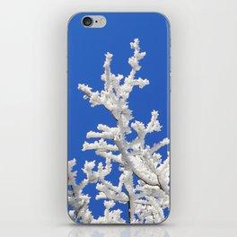 Hoarfrost iPhone Skin