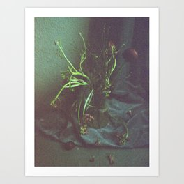 Still Life Dead Flowers Art Print