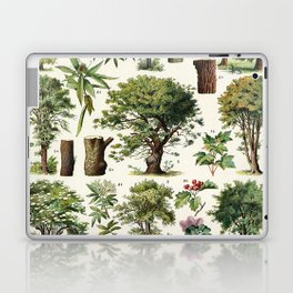 Adolphe Millot - Arbres A - French vintage botanical poster Laptop & iPad Skin
