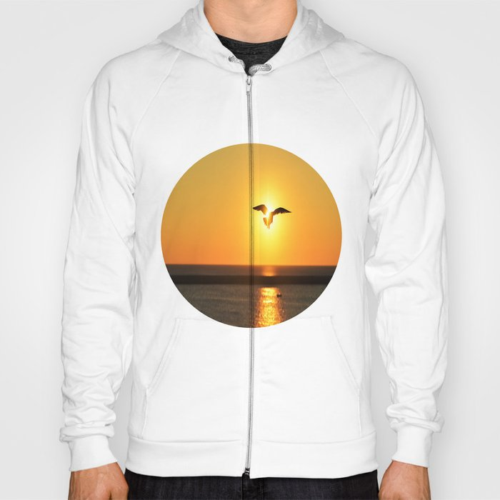 Icarus Vacationing in San Diego, California  Hoody