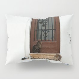 Two cats on White Stairs Pillow Sham