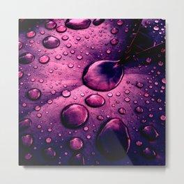 water drops XIIX Metal Print