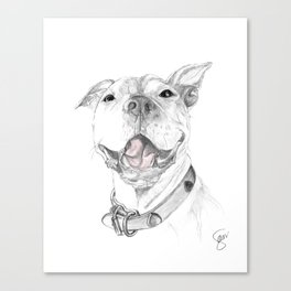 A Smile is Worth a Thousand Words :: A Pit Bull Smile Canvas Print