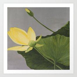 Yellow Pond Beauty Art Print