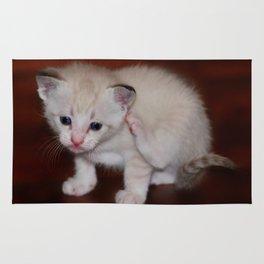 Smitten with a Kitten Rug