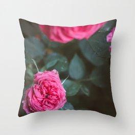 Roses blossom Throw Pillow