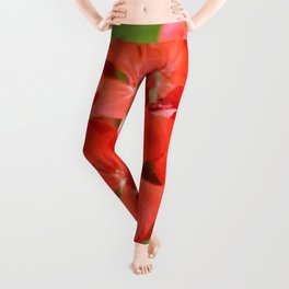 Red Geranium Pelargonium hortorum Leggings