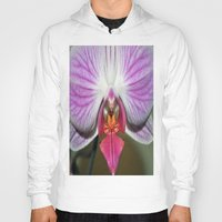 orchid Hoodies featuring Orchid  by Sammycrafts