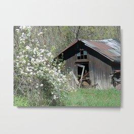 Old Building with Wildflowers Metal Print