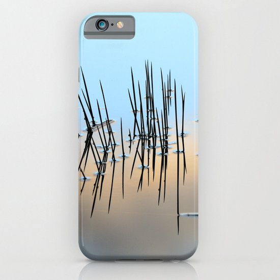 Pinchos iPhone & iPod Case