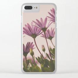 Pink Daisies #flowerprint #nurserydecor #nursery #hellotwiggs #flowerphotography #daisies Clear iPhone Case