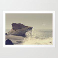 Laguna Beach #17 Art Print