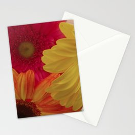 Gerbera Daisy Delight Stationery Cards