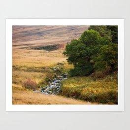 Wicklow Mountains (RR733) Art Print