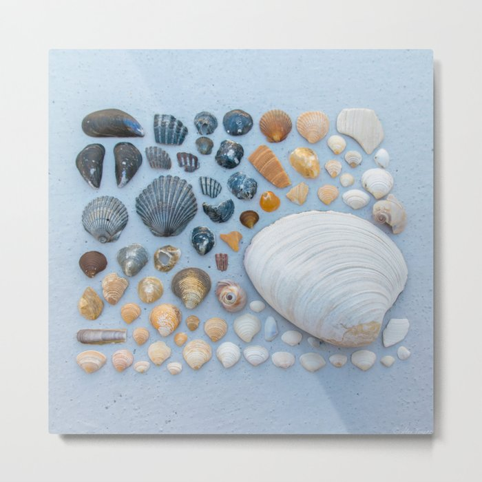 Sally Sells Sea Shells and I bought 'em Metal Print