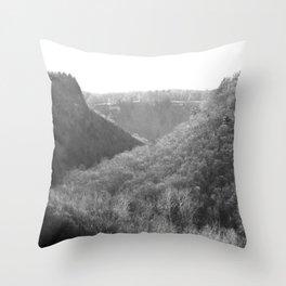 Letchworth Throw Pillow