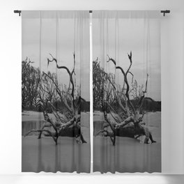 Ghost Trees - Driftwood Beach Blackout Curtain