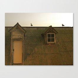 Alcaraz Seagulls Canvas Print