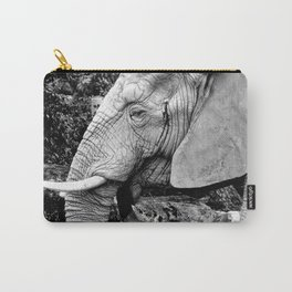 Large Beauty Carry-All Pouch