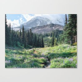 mt. adams in the summer Canvas Print