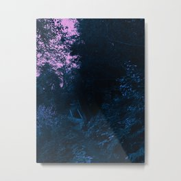 0407 Metal Print