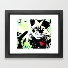 Key lime kitty Framed Art Print
