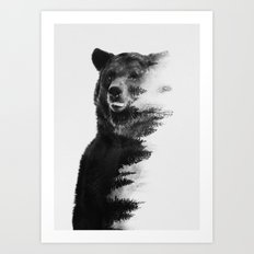 Observing Bear (black & white version) Art Print