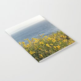California Summer Notebook