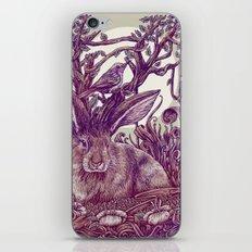 Rabbit Horns iPhone & iPod Skin
