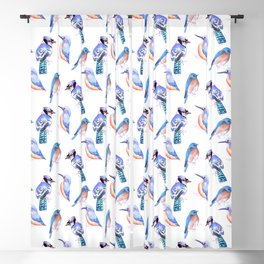 Blue birds painting- Blue jay kingfisher and bluebird Blackout Curtain