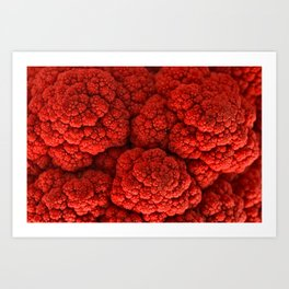Cauliflower Kiss Art Print