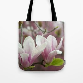 Pastel blossoms (Japanese magnolia) Tote Bag