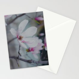 Sweet & Delicate Stationery Cards