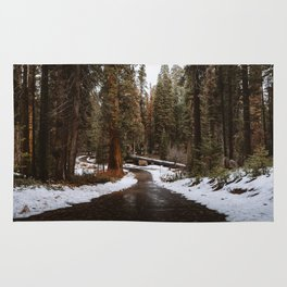 Tunnel Log Road in Sequoia Rug