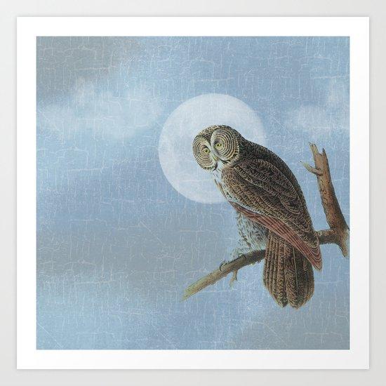 Moon Owl Art Print