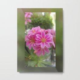 Tina's Garden: Pink Flower Metal Print