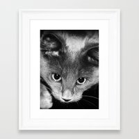 kitten Framed Art Prints featuring kitten by Bunny Noir