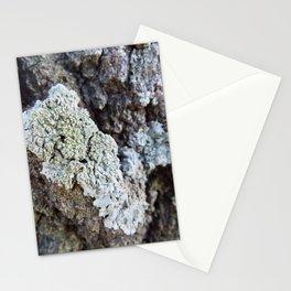 Oak bark Stationery Cards
