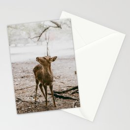 Nara, Japan Deer Fawn Stationery Cards