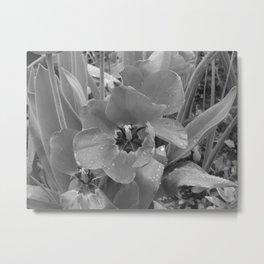 Black and White Flower (1) Metal Print