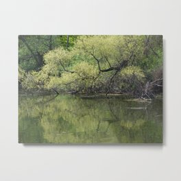 Reflecting Spring Green Metal Print