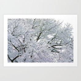 Treetop Snow Art Print