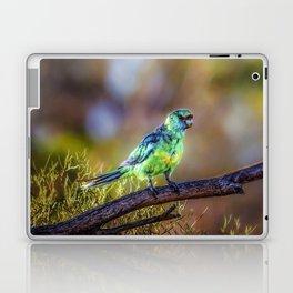 Mallee Ringneck Parrot Laptop & iPad Skin