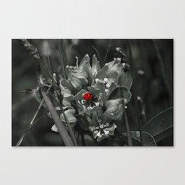 Selective Bug Canvas Print